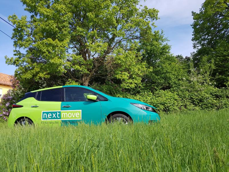 Schickes Nissan-Elektroauto im Grünen